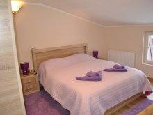 Accommodation Budacu de Jos, Tichet de vacanță, Alpha Apartment