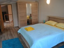 Accommodation Bârla, Beta Apartment