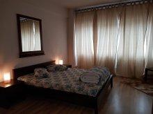 Accommodation Bălteni, Vogue Hostel