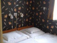 Vacation home Tiszanagyfalu, Csillag Guesthouse 3.