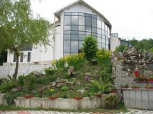 Accommodation Chirițeni, Aquatur Guesthouse