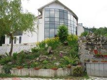 Accommodation Tulgheș, Aquatur Guesthouse