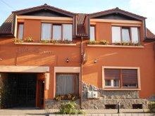 Accommodation Albesti (Albești), Monica Vila