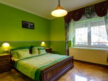 Accommodation Csokonyavisonta, Andrea Villa Apartment