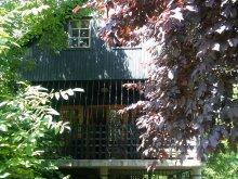 Accommodation Cégénydányád, Levi House