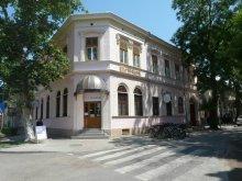 Hotel Tiszaszentmárton, Hotel și Restaurant Hajdú