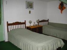 Accommodation Borzont, Colț de Rai Vila