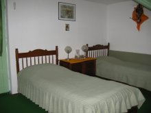 Accommodation Lunca (Vârfu Câmpului), Colț de Rai Vila