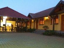 Accommodation Mugeni, Lányi Guesthouse