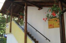 Accommodation Fogarasföld, Ana Guesthouse