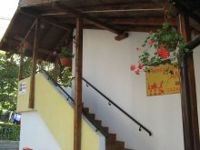 Bed & breakfast Capu Piscului (Godeni), Ana Guesthouse