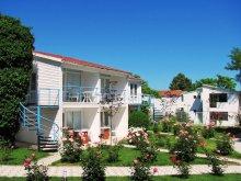 Vilă Râmnicu de Jos, Tichet de vacanță, Vila Alfa