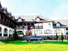 Accommodation Zărnești, Curtea Veche Inn