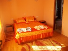 Accommodation Agrișu de Sus, Georgiana Guesthouse