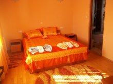 Accommodation Borleasa, Georgiana Guesthouse