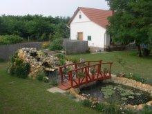 Guesthouse Csongrád county, Nemeth Farm