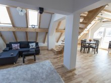Apartment Cârțișoara, Duplex Apartment Transylvania Boutique