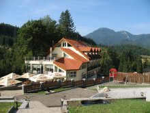 Accommodation Vama Buzăului, Topaz Guesthouse