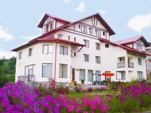 Accommodation Braşov county, Cristal Guesthouse