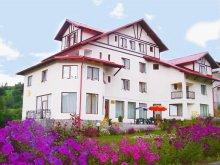 Accommodation Tohanu Nou, Tichet de vacanță, Cristal Guesthouse