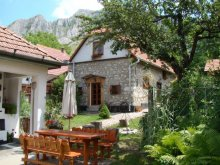 Cazare Pârâu-Cărbunări, Voucher Travelminit, Casa de oaspeți Dulo Annamária