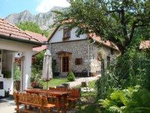 Cazare Valea Poienii (Râmeț), Casa de oaspeți Dulo Annamária
