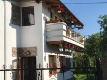 Villa Trișorești, Luxus Apartmanok