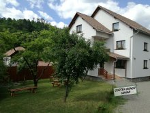 Accommodation Salty water pool Praid, Boncz Guesthouse