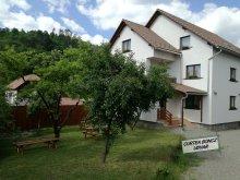 Accommodation Valea Borcutului, Boncz Guesthouse