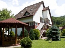 Vacation home Bistrița Bârgăului Fabrici, Diana House
