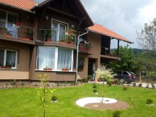Accommodation Budacu de Sus, Erzsoárpi Guesthouse