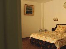 Accommodation Romania, Vila Patricia