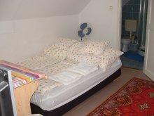 Cazare Kisszékely, Casa de oaspeți Német - Apartament la etaj