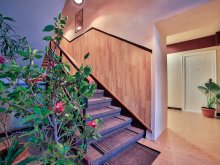 Accommodation Borzont, Hostel Odorhei