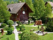 Accommodation Barajul Zetea, Tichet de vacanță, Nagy Lak II. Guesthouse