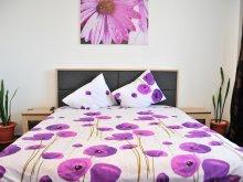 Accommodation Tomnatec, La Sonia Apartment