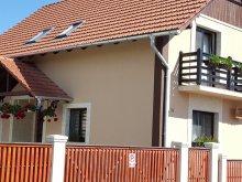 Accommodation Băgara, Alexa Guesthouse