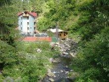 Panzió Szészárma (Săsarm), Valea Paradisului Panzió