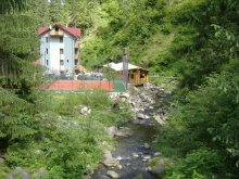 Szállás Groșeni, Valea Paradisului Panzió
