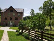 Szállás Măgura (Hulubești), Valea Craiului Panzió