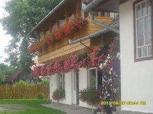 Guesthouse Viștișoara, Ibolya Pension