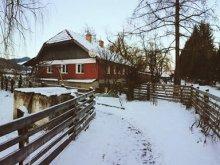 Pensiune Bucovina, Pensiunea Casa Ott