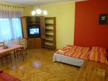 Accommodation Pest county, Danube-Panorama Apartment