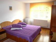 Accommodation Costești, Gura de Rai Guesthouse
