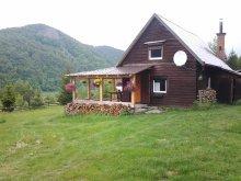 Accommodation Săldăbagiu Mic, Meda Chalet