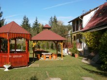 Apartment Cered, Ferencz Guesthouse