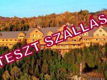 Christmas Package Dorna, Travel Hotel (test accomodation)