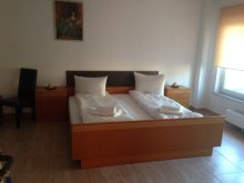 Accommodation Dealu Frumos, Casa Clara Villa