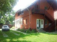 Panzió Bodzavásár (Buzău), AFRA Panzió
