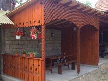 Accommodation Săliște, Adina Guesthouse